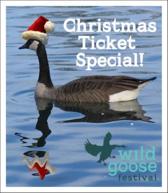 xmas goose