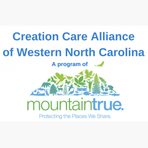 http://wildgoosefestival.org/wp-content/uploads/2015/06/CCA-Temp-Logo-3-wpcf_300x300-pad-16316664.png