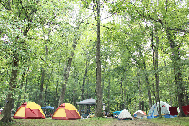 tent camping at wild goose